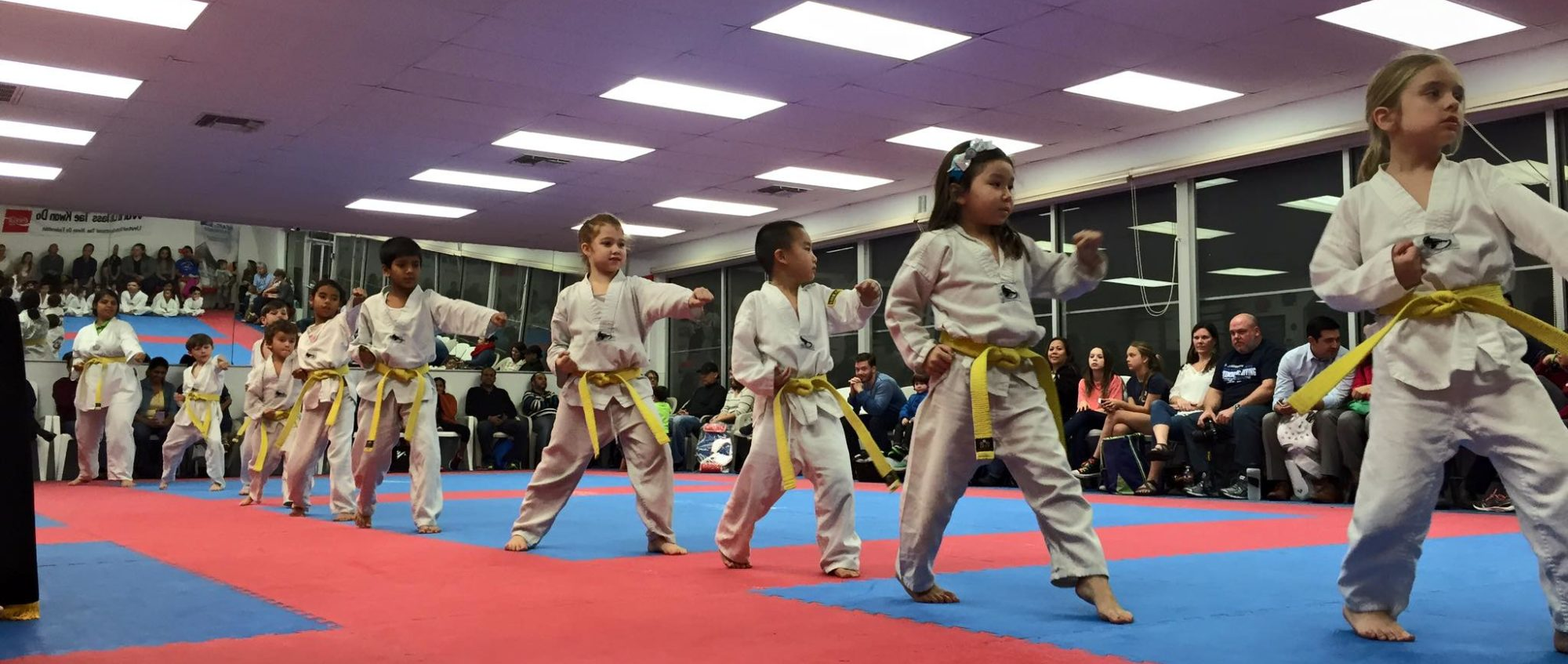 National School of Martial Arts - Olympic Taekwondo
